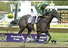 Undefeated Vindication winning BC Juvenile.
