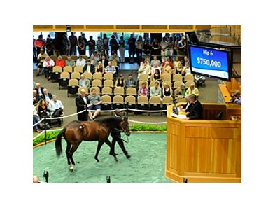 Hip. 6 a Bernardini--Mountain Mambo colt sold for $750,000.