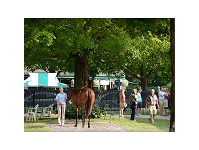 Fasig-Tipton Saratoga Yearling Sale