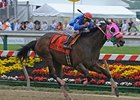 "No Advantage pulls away in the William Donald Schaefer Stakes.<br><a target=""blank"" href=""http://www.bloodhorse.com/horse-racing/photo-store?ref=http%3A%2F%2Fpictopia.com%2Fperl%2Fgal%3Fprovider_id%3D368%26ptp_photo_id%3D8117284%26ref%3Dstory"">Order This Photo</a>"
