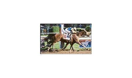 Unshaded, winning the 2000 running of the Travers Stakes.