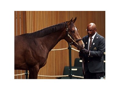 Hip 956 went for $1.1 million during the fourth session of the Keeneland September yearling sale.