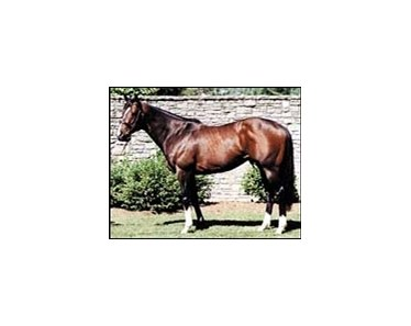 Tale of the Cat, leads all sires by number of 2004 foals.