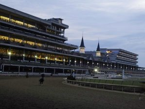 Fields Filling for Churchill Stakes