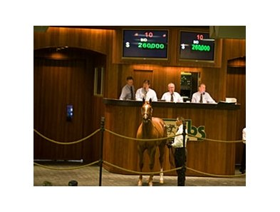 Colt; Mr. Greeley - Air Marshall by Silver Deputy, brought $260,000 as the Ocala Breeders' Sales Co. March select sale of 2-year-olds in training got underway.