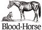 Bloodhorse.com Honored for Barbaro Coverage, Best Web Site