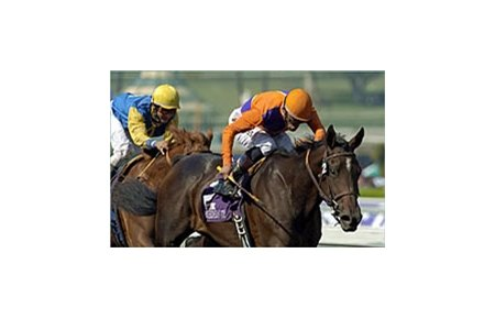 Breeders' Cup Juvenile winner Action This Day, trained by Richard Mandella.