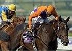 Victory by Action This Day in the Breeders' Cup Juvenile clinched his Eclipse Award.