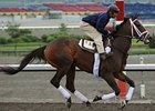 Embur's Song preps for the Woodbine Oaks on June 12.