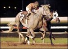 "Delightful Kiss (shown winning the Iowa Derby) headlines the field for the West Virginia Derby.<br><a target=""blank"" href=""http://www.bloodhorse.com/horse-racing/photo-store?ref=http%3A%2F%2Fpictopia.com%2Fperl%2Fgal%3Fprovider_id%3D368%26ptp_photo_id%3D1596756%26ref%3Dstory"">Order This Photo</a>"
