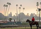 The Pro-Ride surface at Santa Anita has attracted 26 horses from Europe to the Breeders' Cup.