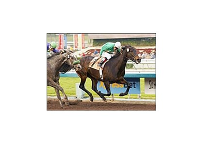 Star Parade goes for repeat in Sunday's Santa Maria.