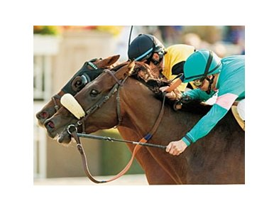 "Tiago and Awesome Gem battled to the wire in the 2007 Goodwood. <br><a target=""blank"" href=""http://www.bloodhorse.com/horse-racing/photo-store?ref=http%3A%2F%2Fpictopia.com%2Fperl%2Fgal%3Fprovider_id%3D368%26ptp_photo_id%3D2388199%26ref%3Dstory"">Order This Photo</a>"
