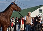 Preakness Stakes Hopefuls Remain on Target