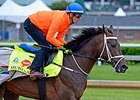 Belmont-Bound Mubtaahij Breezes at Churchill
