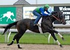 Great Hunter cruises in Keeneland work