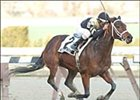 Cyber Secrets cruises to victory in the Cicada Saturday at Aqueduct.