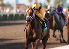 "Game Face wins the Inside Information at odds of 3-5. <br><a target=""blank"" href=""http://www.bloodhorse.com/horse-racing/photo-store?ref=http%3A%2F%2Fgallery.pictopia.com%2Fbloodhorse%2Fgallery%2F69713%2Fphoto%2Fbloodhorse%3A7905143%2F%3Fo%3D1"">Order This Photo</a>"