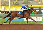 "Arson Squad joins six of the seven original starters for the Jan. 12 San Pasqual Handicap (gr. II).<br><a target=""blank"" href=""http://www.bloodhorse.com/horse-racing/photo-store?ref=http%3A%2F%2Fpictopia.com%2Fperl%2Fgal%3Fprovider_id%3D368%26ptp_photo_id%3D3256488%26ref%3Dstory"">Order This Photo</a>"