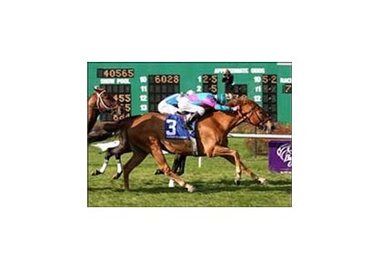 Cloudy's Knight, Ramsey Zimmerman up, wins the Fair Grounds Breeders' Cup Handicap, on Louisiana Derby Preview Day at Fair Grounds.