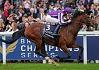 Excelebration Wins QEII On Champions Day Card