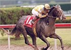 Monarchos in the Florida Derby