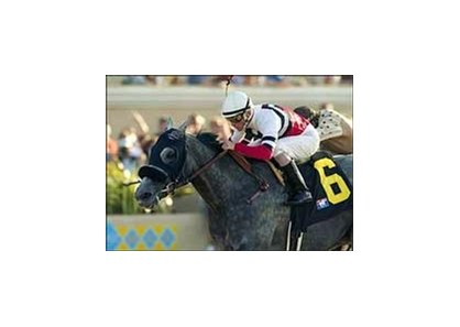 "Top Sprinter River's Prayer will be sold at the Keeneland November sale.<br><a target=""blank"" href=""http://www.bloodhorse.com/horse-racing/photo-store?ref=http%3A%2F%2Fpictopia.com%2Fperl%2Fgal%3Fprovider_id%3D368%26ptp_photo_id%3D2042428%26ref%3Dstory"">Order This Photo</a>"
