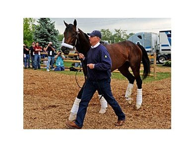 "Super Saver arrives at Pimlico on May 12.<br><a target=""blank"" href=""http://www.bloodhorse.com/horse-racing/photo-store?ref=http%3A%2F%2Fpictopia.com%2Fperl%2Fgal%3Fprovider_id%3D368%26ptp_photo_id%3D8955267%26ref%3Dstory"">Order This Photo</a>"