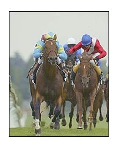 Falbrav, left, winning the Queen Elizabeth II Stakes over Russian Rythm.