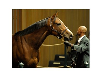 Mary Delaney, winner of the 2007 Vinery Madison Stakes at Keeneland, kicked off the Overbrook Farm dispersal at the Keeneland November auction.
