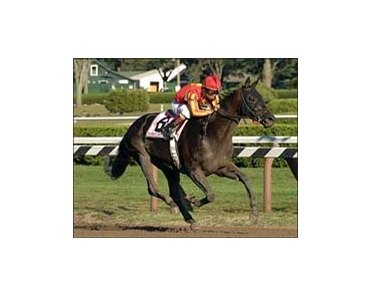 "Midnight Lute, Shaun Bridgmohan aboard, wins the Forego Stakes.<br><a target=""blank"" href=""http://www.bloodhorse.com/horse-racing/photo-store?ref=http%3A%2F%2Fpictopia.com%2Fperl%2Fgal%3Fprovider_id%3D368%26ptp_photo_id%3D2161333%26ref%3Dstory"">Order This Photo</a>"