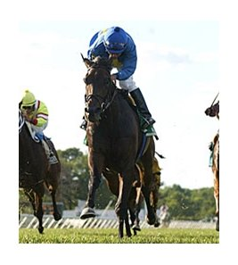 Zultanite finished 2nd in the Boiling Springs Stakes on the Monmouth Park turf June 23.