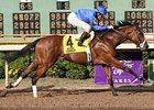 Regal Ransom won the 2009 Super Derby.