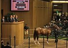 Hip 87 sold for $1.4 million at the Keeneland September Sale.