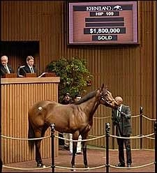 Point Ashley Tops Opening Session of Keeneland January Sale