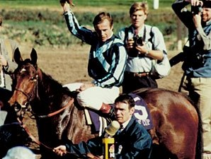 Miesque Top Racehorse And Broodmare Dies Bloodhorse
