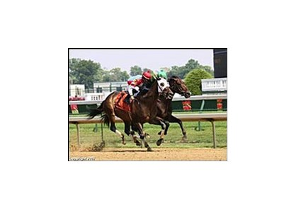 Brass Hat will run in Sept. 1 Woodward.