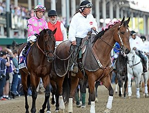 Firing Line at the 2015 Kentucky Derby.