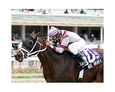 Wise Answer will be making his turf debut in the Jan. 1 Tropical Park Derby.