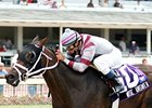 Wise Answer Tries Turf at Calder
