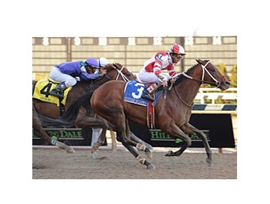 Kodiak Kowboy closes late to win the Cigar Mile.