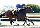 Wild Gams, shown winning the 2007 Thoroughbred Club of America, is back to defend her title in 2008.