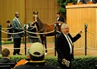 Action continues at the Keeneland November breeding stock sale.
