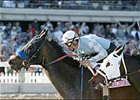 Grade I Winner Silent Sighs Retired