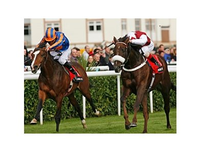 "Casamento (right) holds off Seville to win the Racing Post Trophy.<br><a target=""blank"" href=""http://www.bloodhorse.com/horse-racing/photo-store?ref=http%3A%2F%2Fpictopia.com%2Fperl%2Fgal%3Fprovider_id%3D368%26ptp_photo_id%3D9244656%26ref%3Dstory"">Order This Photo</a>"