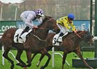 Loch Garman winning the Criterium International de Saint-Cloud.