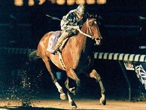 Alysheba to Return to U.S.