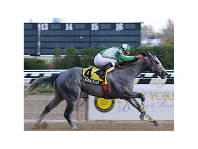 Lookin at Her, who took the Great White Way Stakes, was one of two winners for his sire Hook and Ladder in the New York Stallion Stakes series.