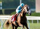 English Channel cruises to Joe Hirsch Turf Classic win.