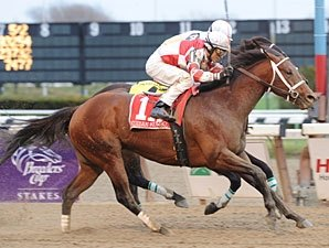 Forego: Kodiak Kowboy Fond of the Spa